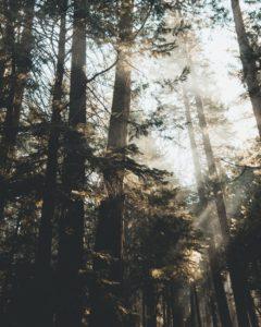 Prayer Points On Divine Location